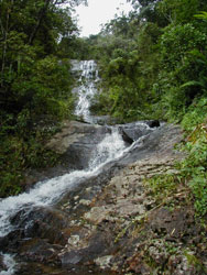 Waterfalls near Camp Marojejia